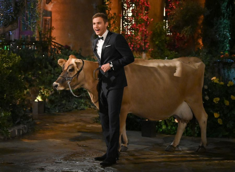Bachelor 24 - Peter Weber - Jan 6th - Discussion - *Sleuthing Spoilers*  153384_6760-900x0
