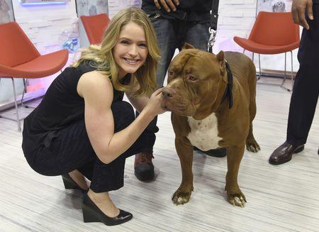 SARA HAINES, BIG DOG