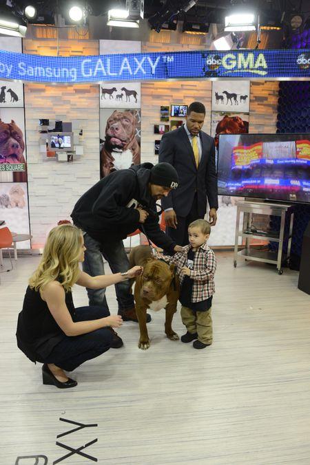 SARA HAINES, MICHAEL STRAHAN, BIG DOG