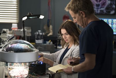 CATERINA SCORSONE, GREG GERMANN