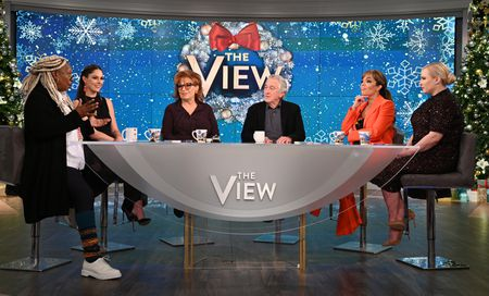 WHOOPI GOLDBERG, ABBY HUNTSMAN, JOY BEHAR, ROBERT DENIRO, SUNNY HOSTIN, MEGHAN MCCAIN