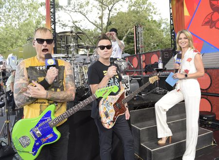 BLINK-182, AMY ROBACH