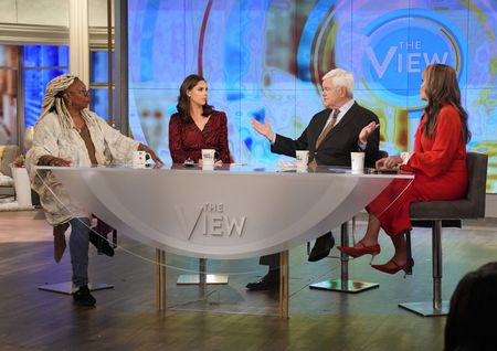WHOOPI GOLDBERG, ABBY HUNTSMAN, NEWT GINGRICH, SUNNY HOSTIN